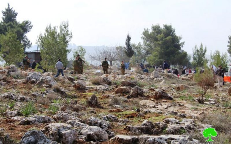 Israeli Occupation Forces ban farmers from planting lands in the Hebron village of Tarqumiya