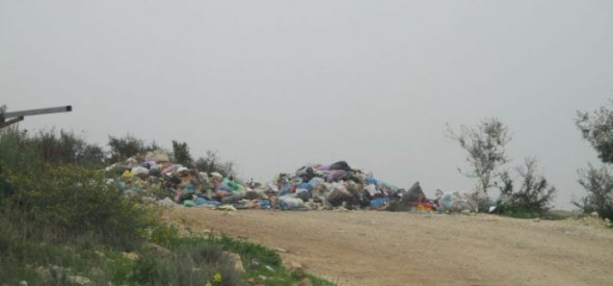 Israeli Occupation Forces confiscate garbage trucks in Qalqiliya governorate