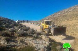 Israeli Occupation Forces ravage an agricultural road in Bani Na'im village in Hebron
