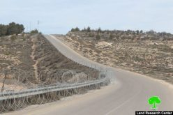 """الاحتلال يضع أسلاكاً شائكة حول الأراضي المحاذية لمستعمرة """"افرات"""" في قرية واد رحال/ محافظة بيت لحم"""