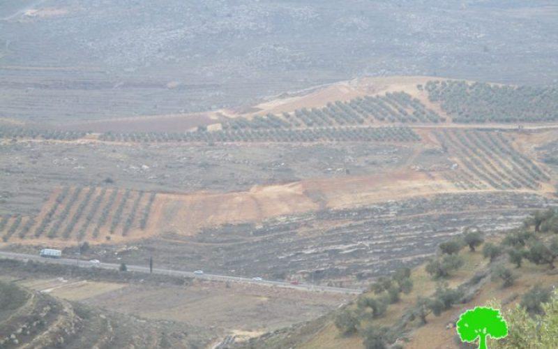 المستعمرون يشرعون في تجريف مساحات واسعة من الأراضي غرب قرية قريوت