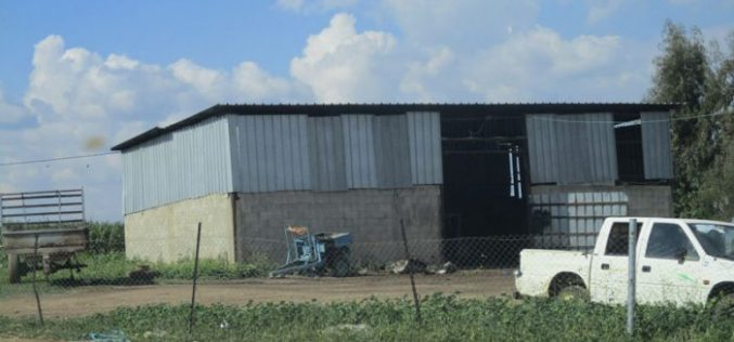 إخطار بوقف العمل في بركس زراعي في قرية بردلة