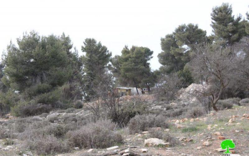 """مستعمرو """"غوش عصيون"""" يضعون كرفانات جديدة في ارض زراعية فيمحافظة بيت لحم"""