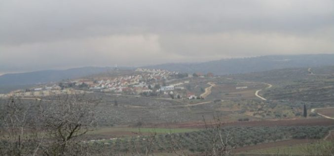 Shevut Rahel colonists loot and Judaize Khneifis hamlet in Nablus city