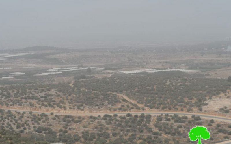 Israel to continue a land grab on 142 dunums in Tulkarm