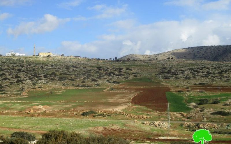 Israeli Occupation Forces confiscate vehicles from Yarza and Ibziq areas of Palestinian Jordan Valley