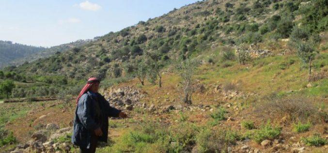 إخطار بإخلاء أراضي زراعية في منطقة واد قانا بحجة أنها محمية طبيعية ؟!!