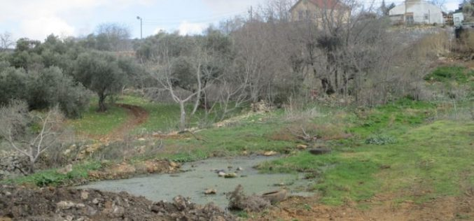 Shevut Rahel colony pumps sewage water towards Qaryut village