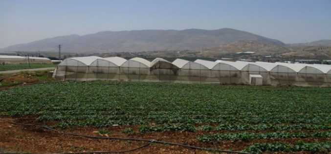 إخطار بهدم خط ماء ناقل في منطقة سهل البقيعة ومصادرة مركبة خاصة