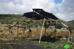 Colonists torch agricultural barrack in Burqa village, East Ramallah city