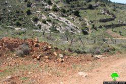 قطع أشجار زيتون وإغلاق طريق زراعية بالسواتر الترابية فيقرية نحالين / محافظة بيت لحم