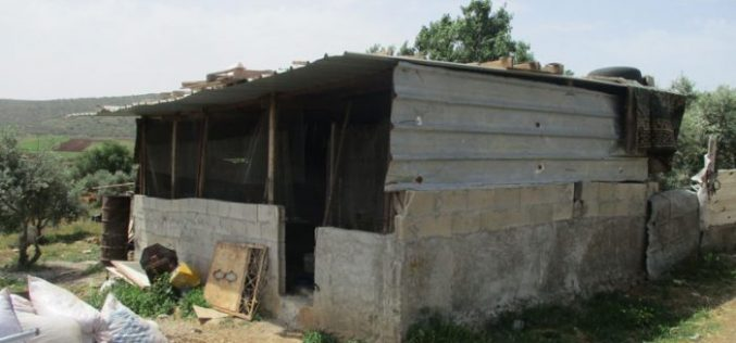 Stop work orders on agricultural facilities in Ramallah governorate