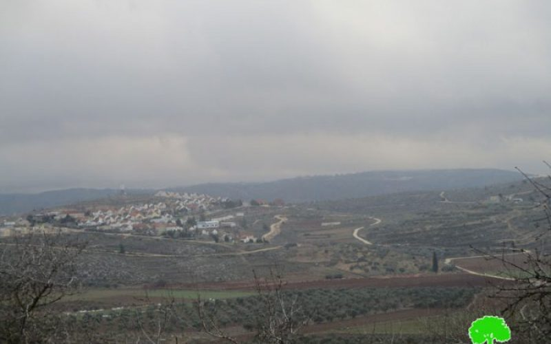 New master plan for Shvut Rahel colony at the expense of Nablus lands