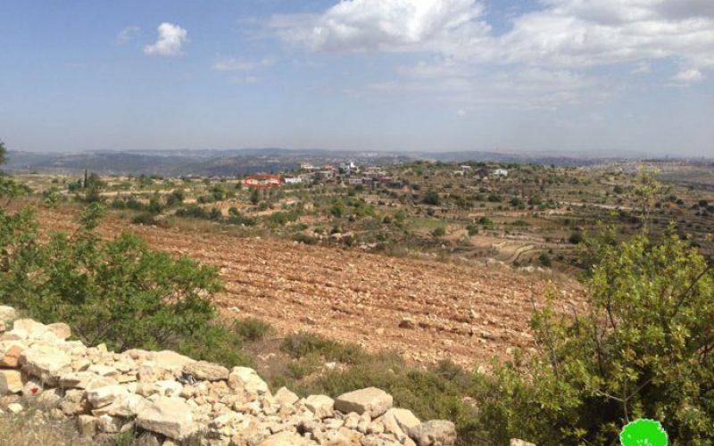Sidi Bo'az colonists ravage agricultural land in Bethlehem city