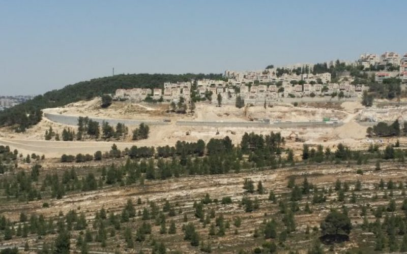Monitoring Report on the Israeli Settlement Activities in the occupied State of Palestine – May 2017