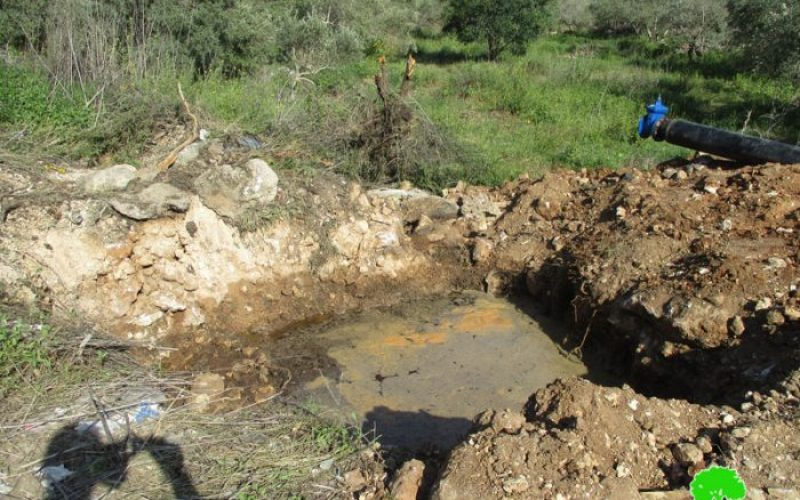 Ariel colony pumps sewage water into Palestinian lands in Salfit