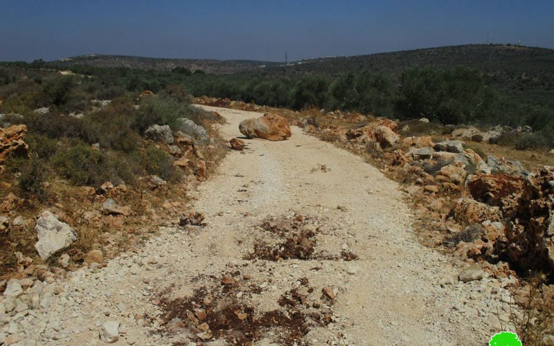 Israeli Occupation Forces close agricultural road north Salfit governorate