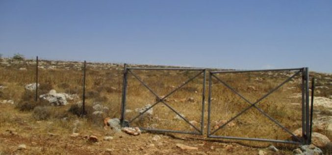 Israeli Occupation Forces order pastoral reserve of eviction in Nablus city