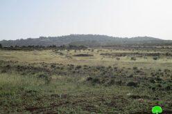 منع استغلال أراض زراعية بحجة أنها مناطق أثرية في بلدة دير استيا