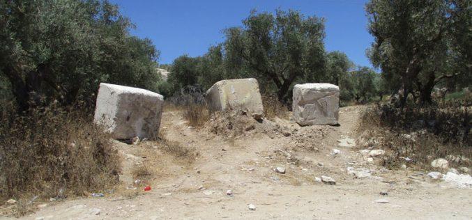 إخطار بمصادرة أراض بهدف إقامة مقطع من السياج الفاصل جنوب بلدة يعبد