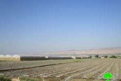 الاحتلال الاسرائيلي يخفض كمية المياه المزودة في قرية عين البيضا
