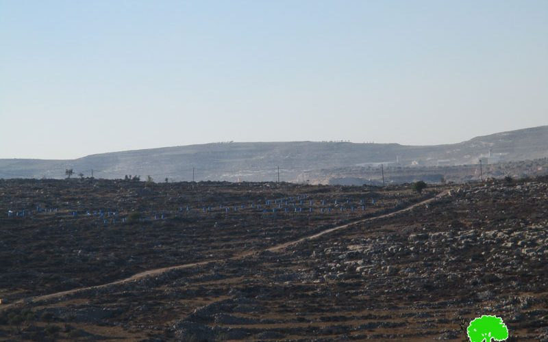 Israeli colonists take over lands from Yasuf village for the favor of Tapuah colony