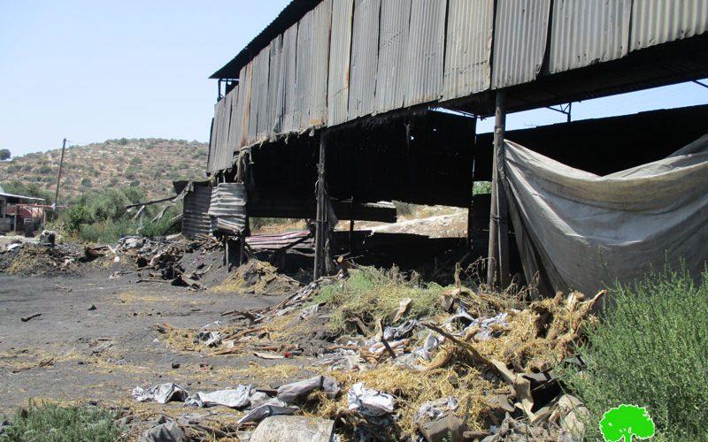 الاحتلال لا زال يلاحق مفاحم يعبد …مصادرة أطنان من الحطب وإتلاف كميات من الفحم