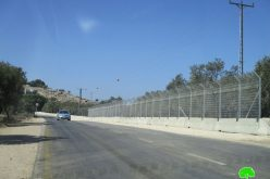 إنشاء سياج عازل على جانبي الطريق الالتفافي جنوب بلدة يعبد / محافظة جنين