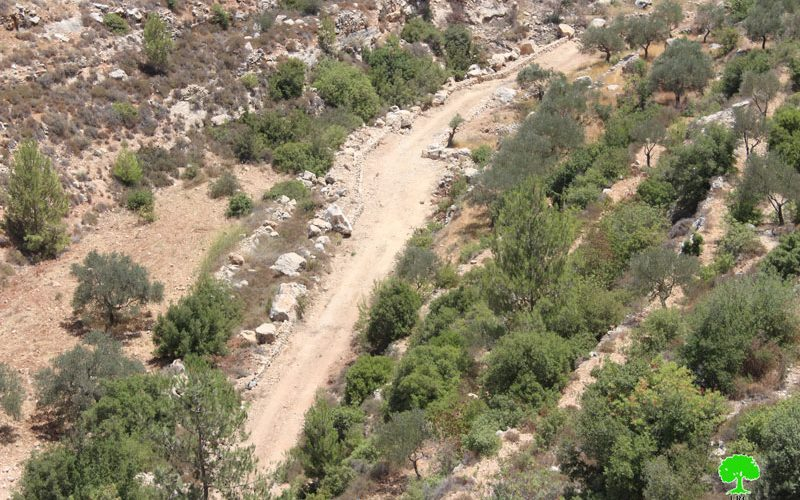 Stop-work order and confiscation in the Bethlehem village of Battir
