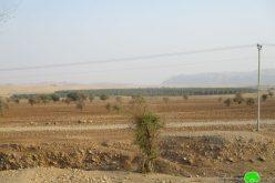 منع مربي الماشية في منطقة العوجا من رعي الأغنام بحجة أنها منطقة عسكرية مغلقة بمحافظة أريحا