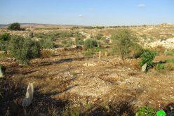 الاحتلال يدمر جدران استنادية ويقتلع أشجار في قرية جيوس / محافظة قلقيلية