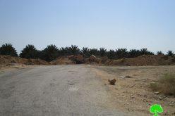 إعادة إغلاق طريق زراعي شرق مدينة أريحا