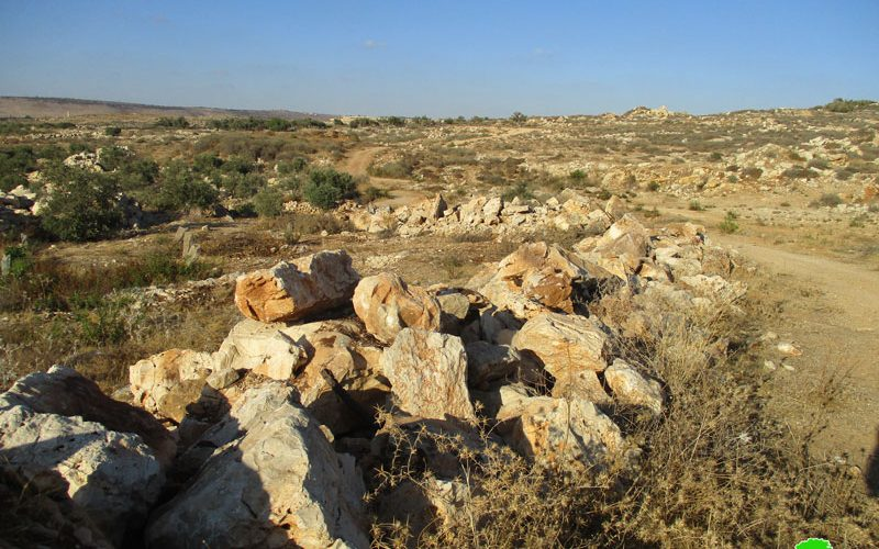 Israel's Occupation Forces demolish retaining walls and uproot trees in Qalqiliya governorate