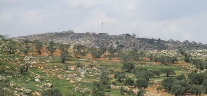 New master plan for Hayovel outpost takes over 45 dunums from Nablus lands