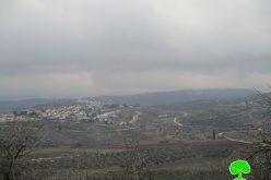 طرد المزارعين من أراضيهم وسرقة عددهم الزراعية المستخدمة في قطف الزيتون في قرية قريوت بمحافظة نابلس