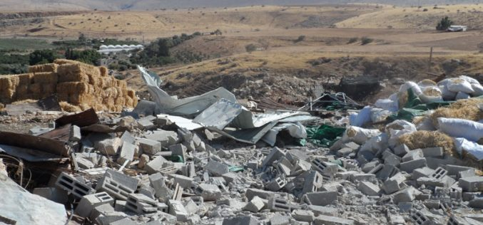 Israel's Occupation Forces demolish three residences in Mid Jordan Valley