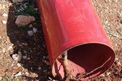 قلع وتقطيع 110 غرسة زيتون في قرية ياسوف / محافظة سلفيت