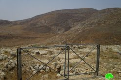 "Israeli Authorities order five pastoral reserves ""to be evicted"" in Nablus governorate"