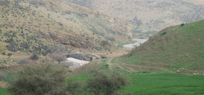 Israeli Occupation Forces confiscate agricultural tents in Tubas governorate
