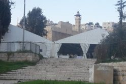 Israeli colonists' assaults and violations in Old City of Hebron