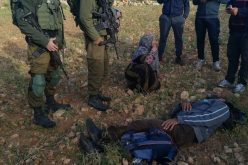 Israeli colonists assault Palestinian farmer in Al-Tuwani area of Hebron