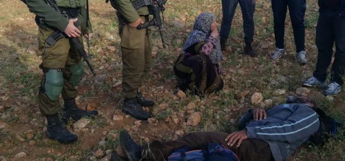 مستعمرون يعتدون على مزارع شرق يطا ويصيبونه بجروح وكسور / محافظة الخليل