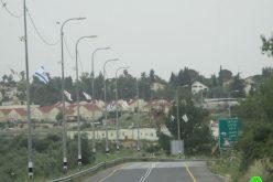 "Expanding ""Hallmish"" settlement / Ramallah governorate"