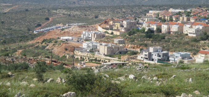 New colonial neighborhood in Revava colony at the expense of Salfit government lands