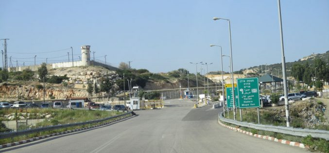 Israeli Occupation Authorities  confiscate a number of kiosks in the periphery of Barta'a military Al checkpoints
