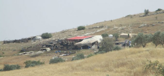 البؤرة الاستعمارية  هار سلعيت اعتداءات متكررة على المزارعين الفلسطينيين وممتلكاتهم في خلة حمد محافظة طوباس