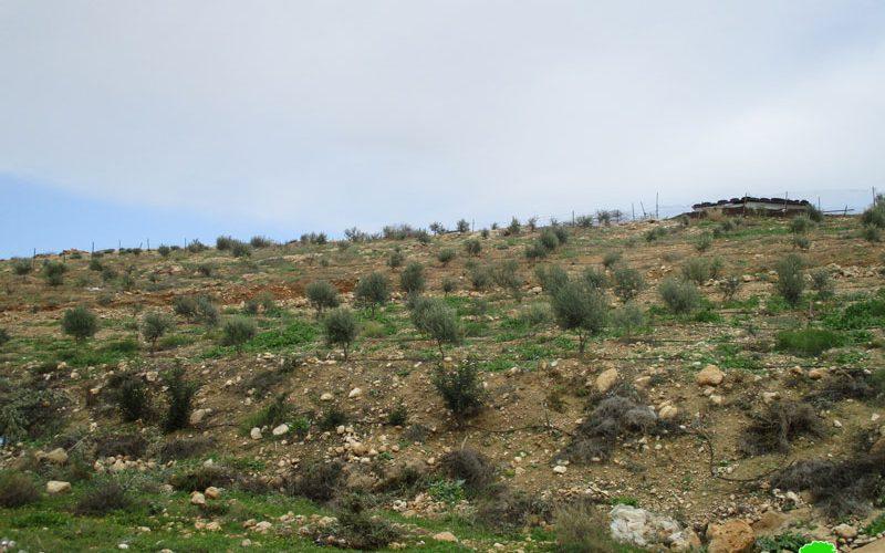 إخطار بإخلاء 53 دونماً زراعياً في منطقة سهل قاعون شمال غرب قرية بردلة محافظة طوباس