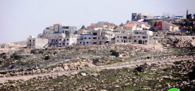 Israeli colonists establish new outpost in Hebron governorate