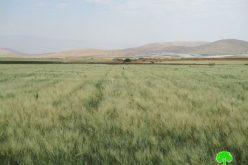 إخطار عدد من المنشآت السكنية والزراعية وخط للمياه في منطقة الرأس الأحمر محافظة طوباس