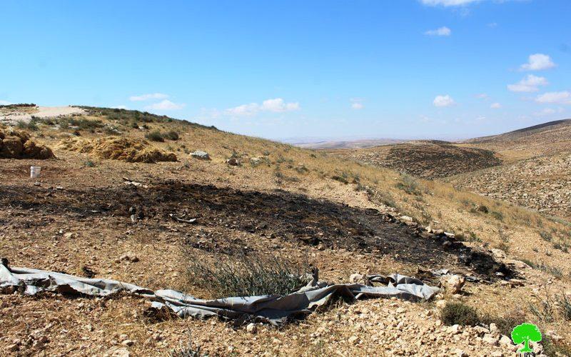 مستعمرون يحرقون محصولاً زراعياً في قرية خلة الضبع شرق يطا  محافظة الخليل